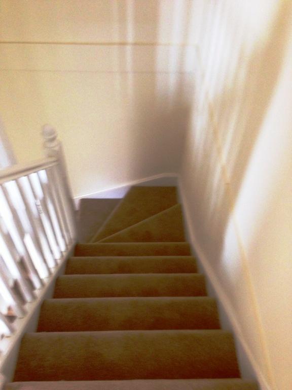 Carpet-1011