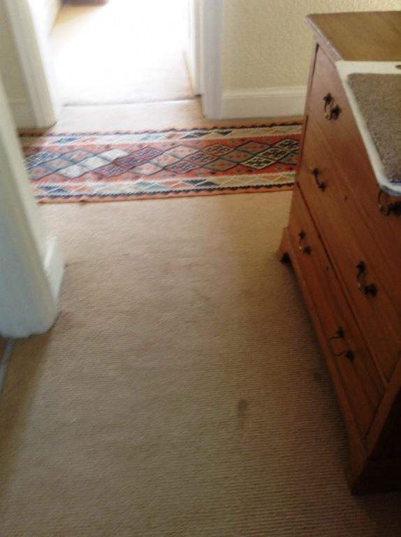 Carpet-10114