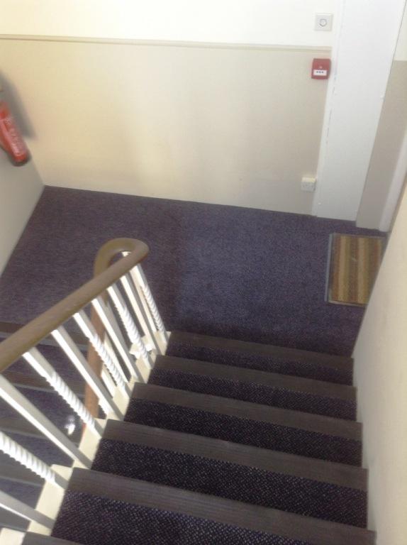 Carpet-10133