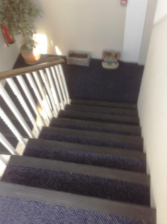 Carpet-10135