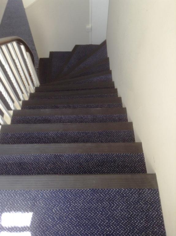 Carpet-10137