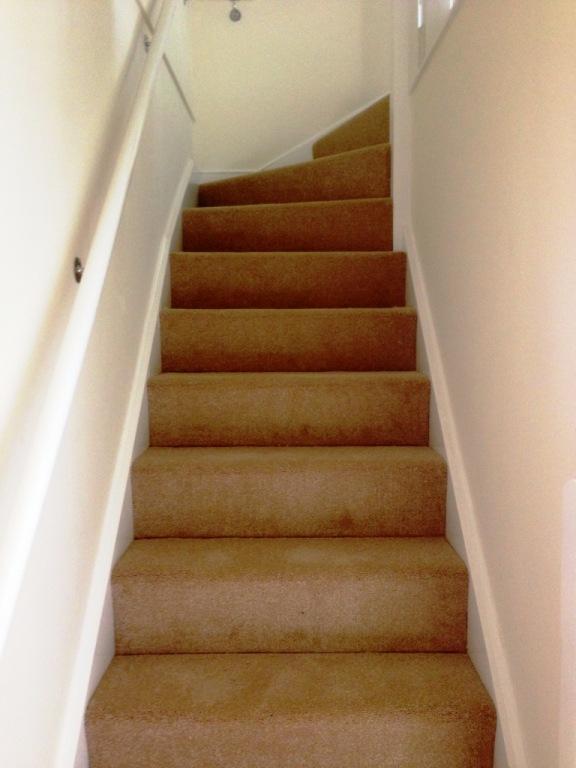 Carpet-1014