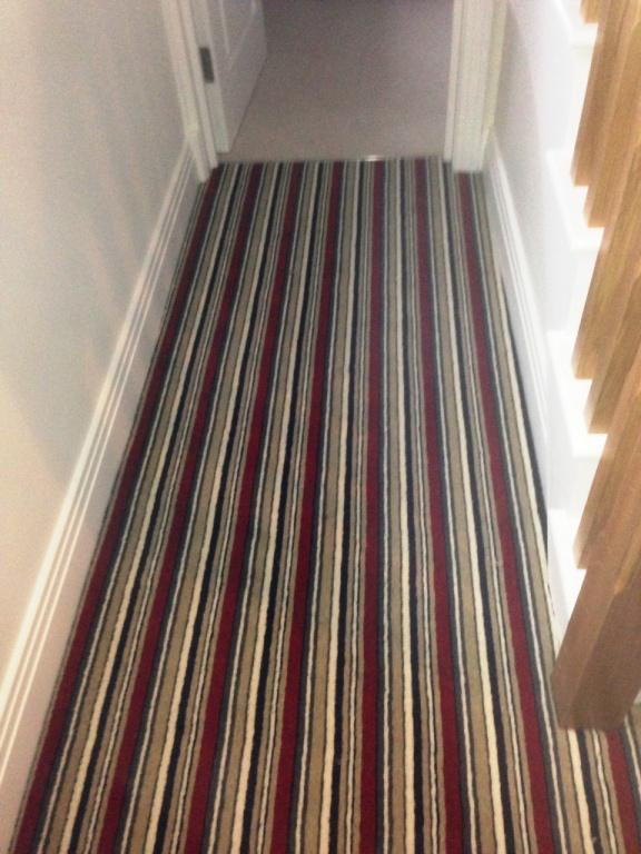Carpet-10146