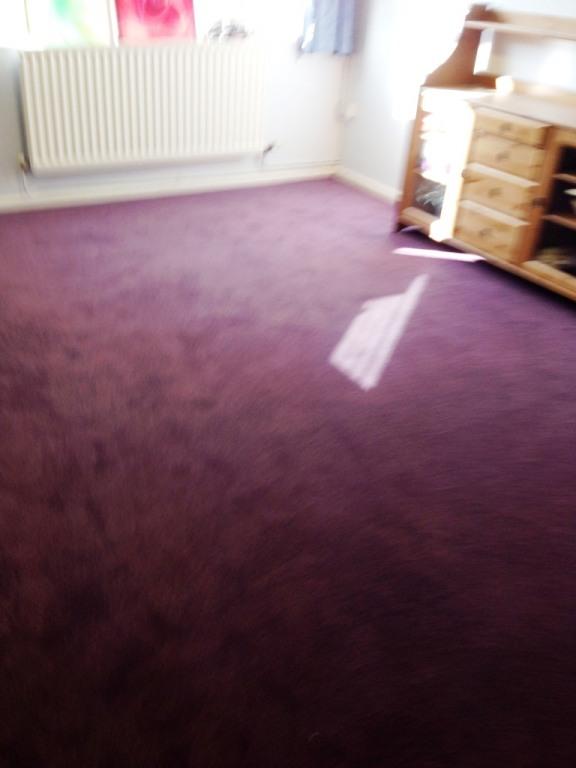 Carpet-10149