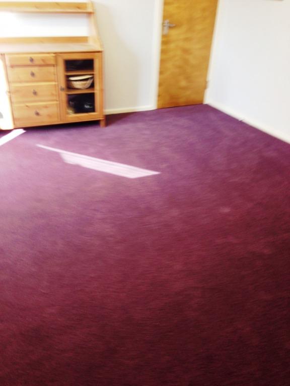 Carpet-10150