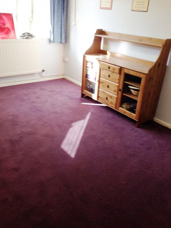 Carpet-10151