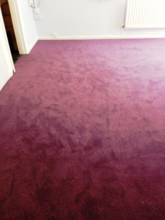 Carpet-10152