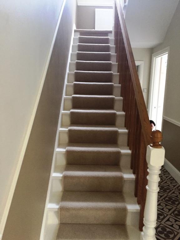 Carpet-10154