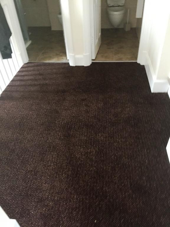 Carpet-10158