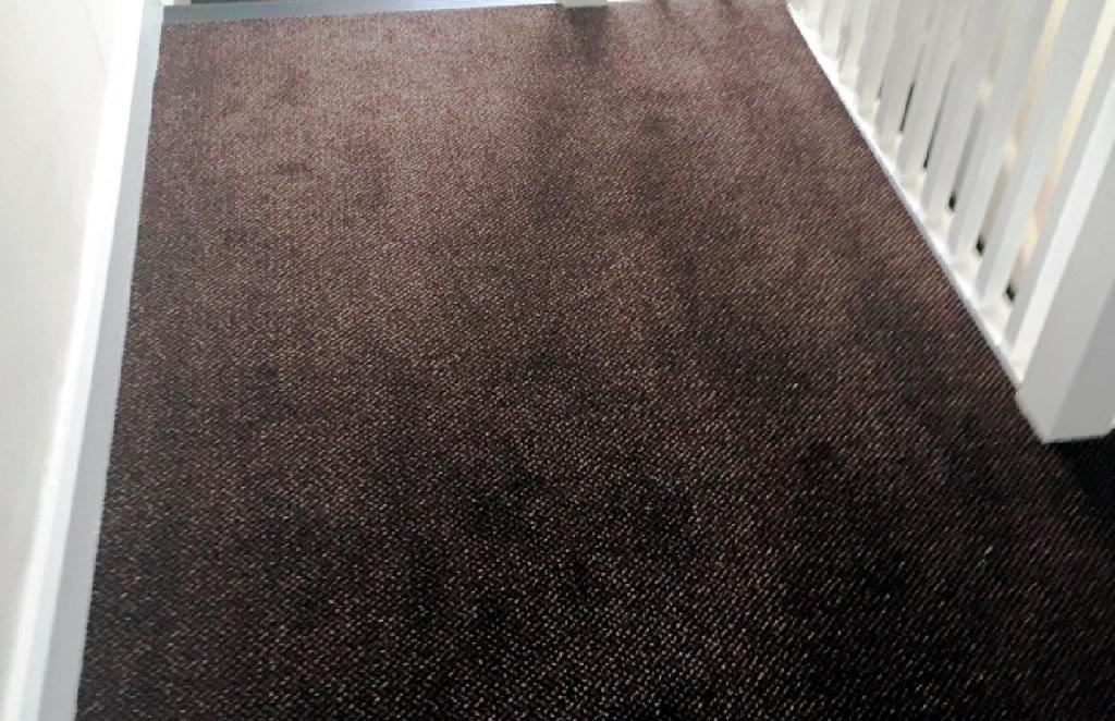 Carpet-10159