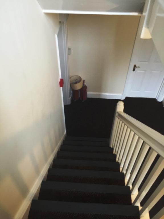 Carpet-10163