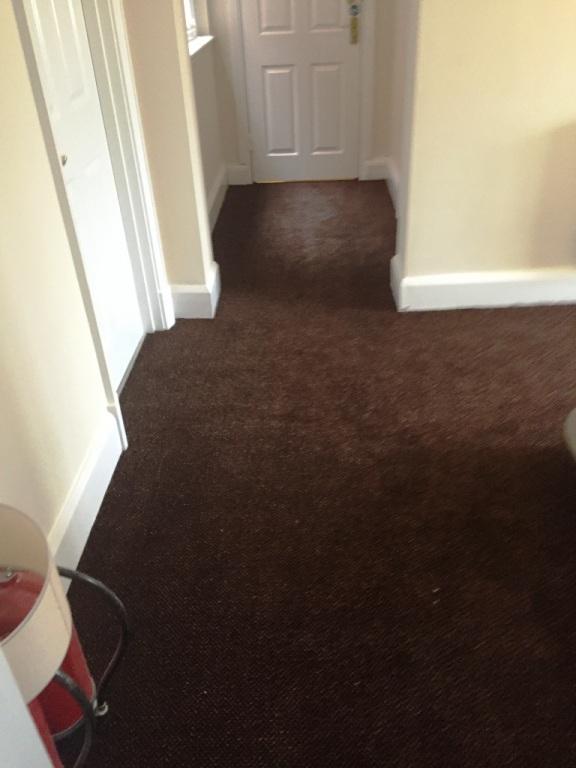 Carpet-10165