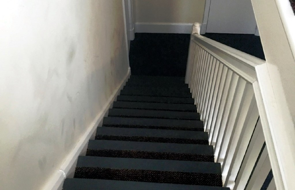 Carpet-10168