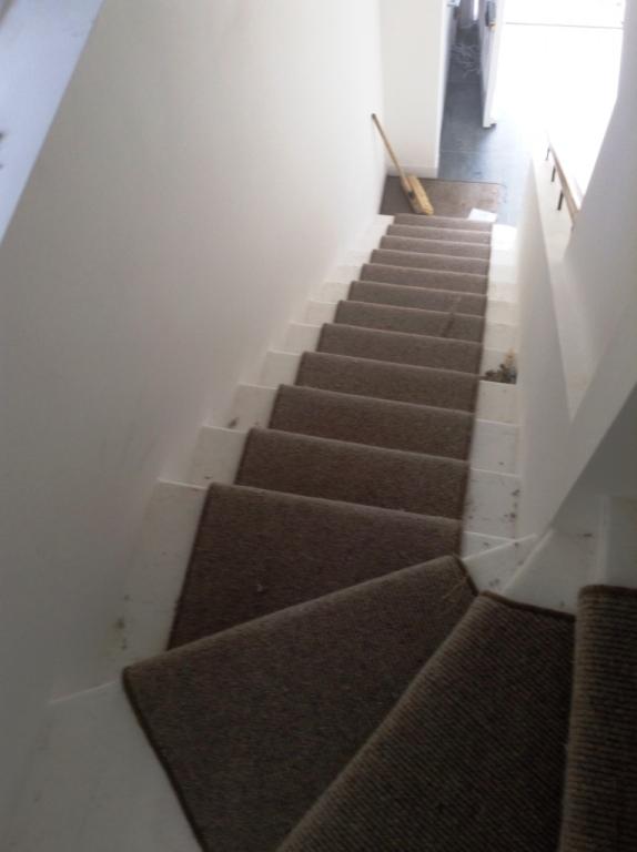 Carpet-10171