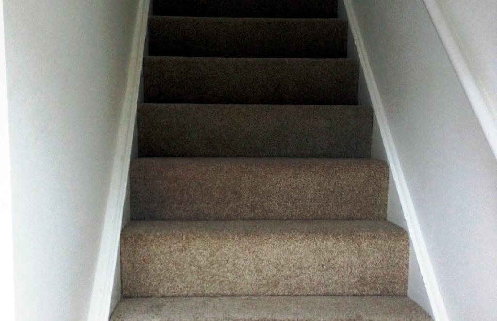 Carpet-12