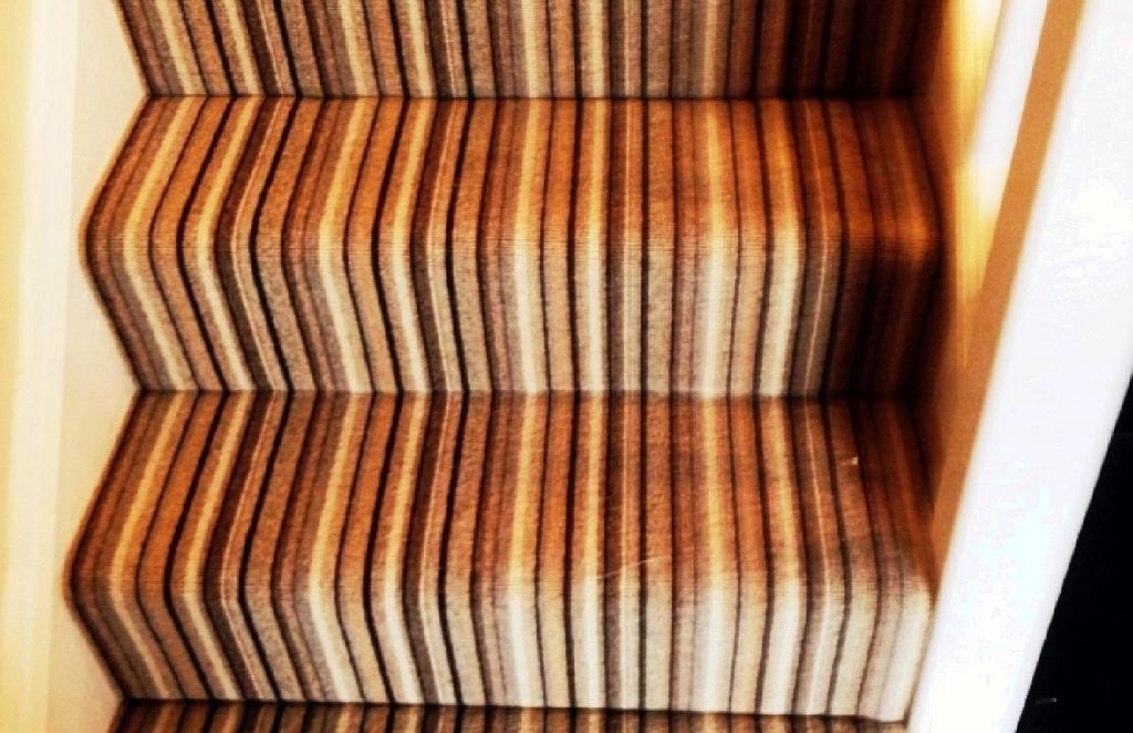 Carpet-31