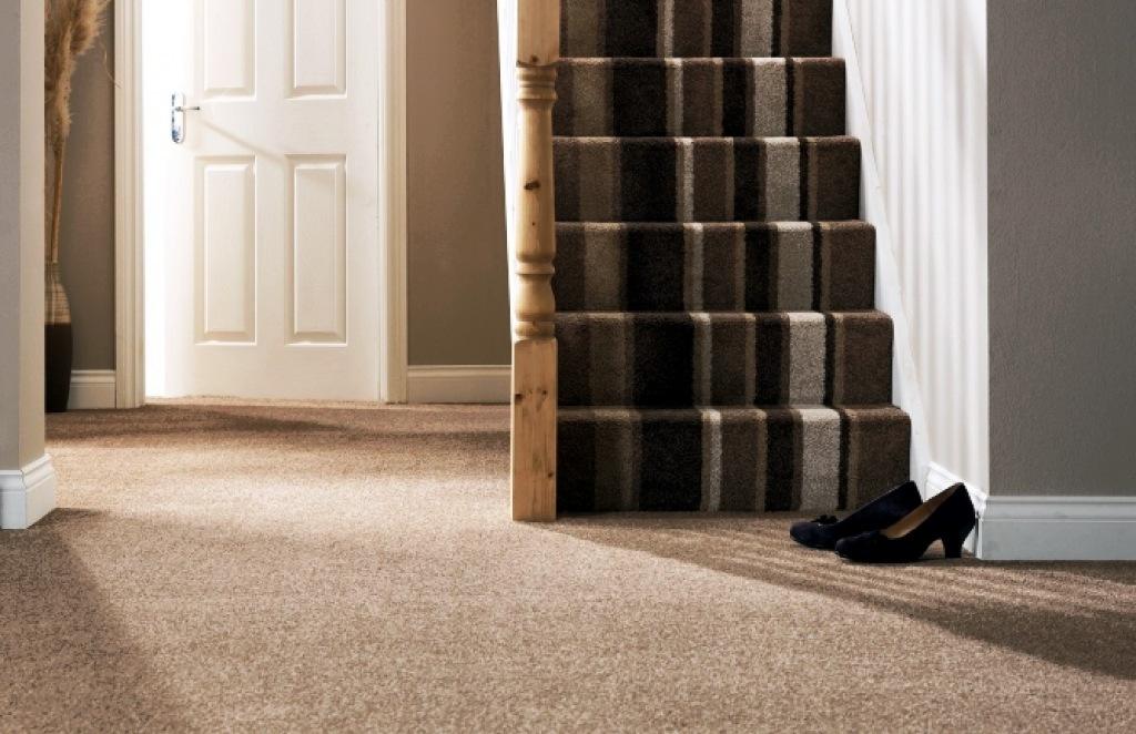 Carpet-60