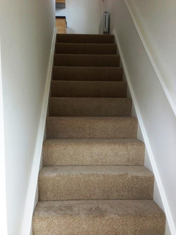 carpet-5000