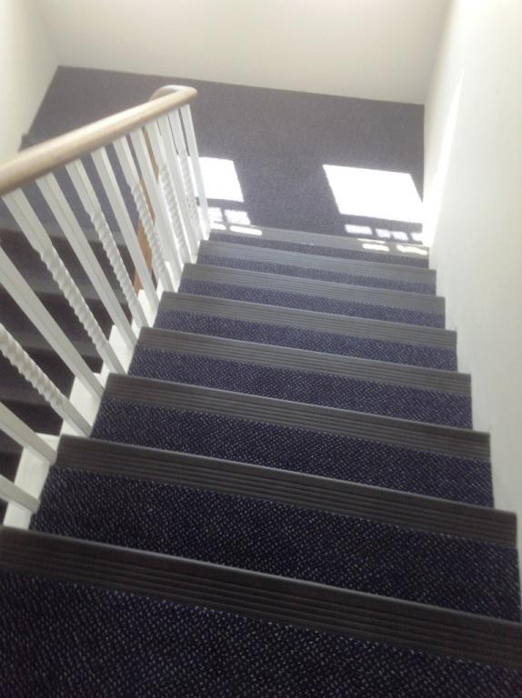 carpet-5000_03
