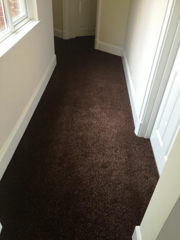 carpet-5000_12