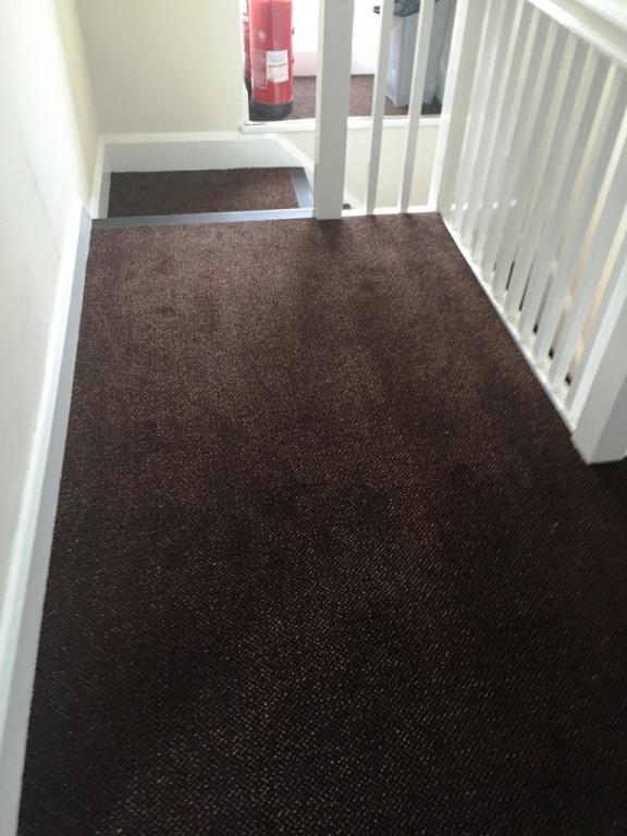 carpet-5000_13