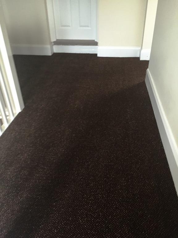 carpet-5000_16