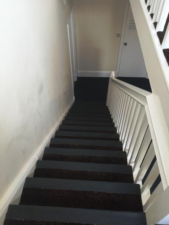carpet-5000_19