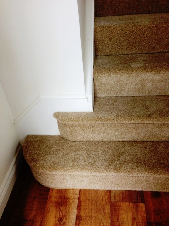 carpet-5000_27