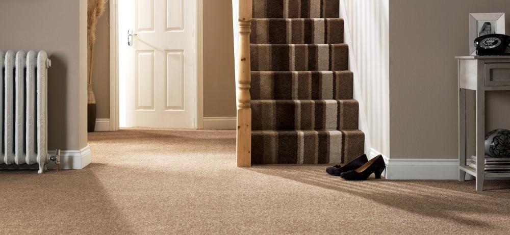 carpet-5000_33