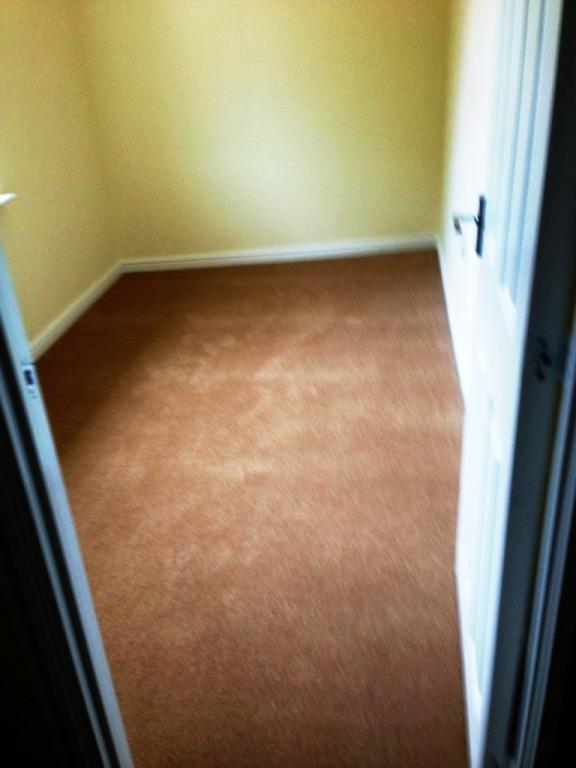 carpet21