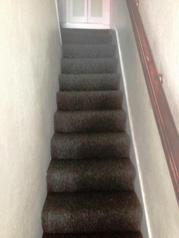 carpet22