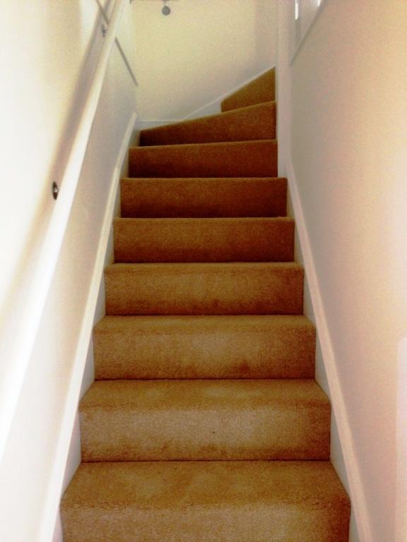 carpet26