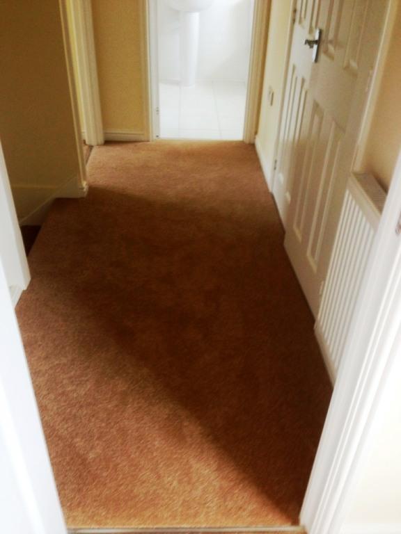 carpet30