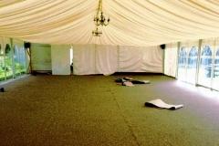 Carpet-15