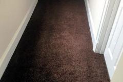 Carpet-40