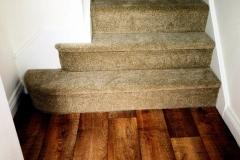 Carpet-50